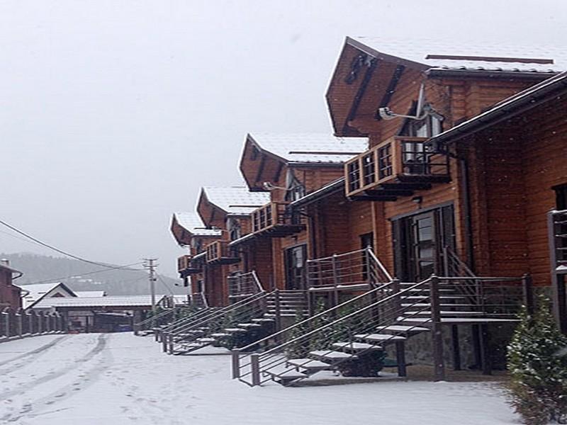 Lisovuj_Dvir_cottage