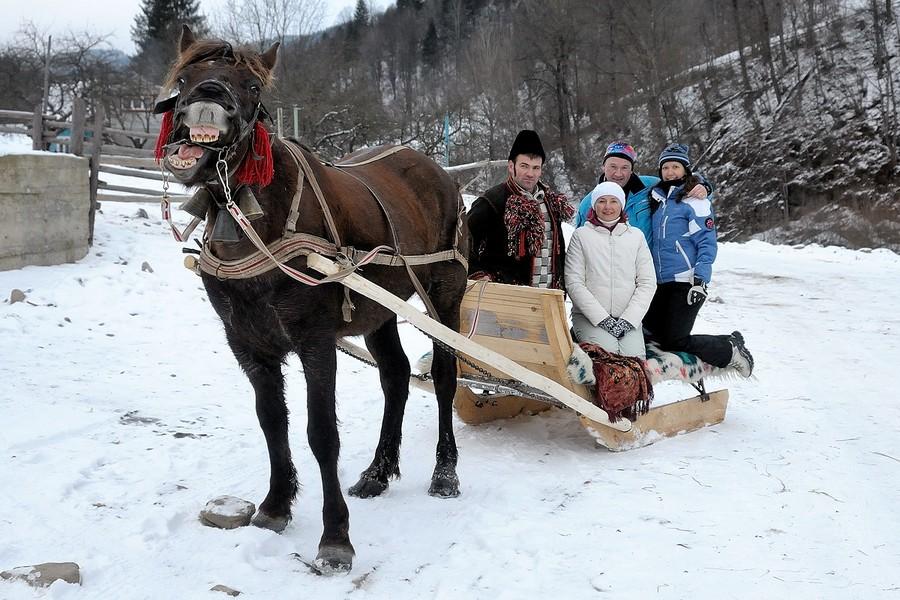 кінь зима сани
